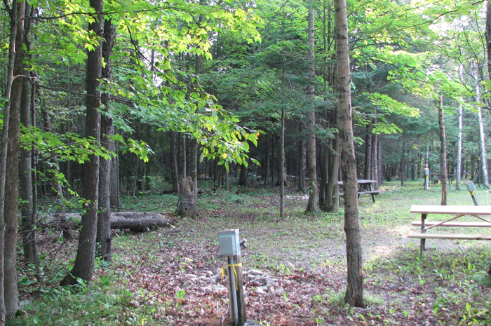 Fish creek campground1 wisconsin association of for Fish creek wisconsin