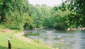 Wolf River Campground3